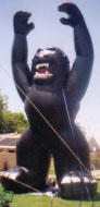 25ft. Black Kong inflatable