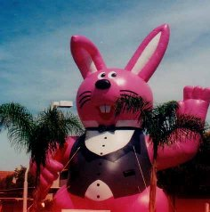 Bunny advertising inflatables for rent and sale.