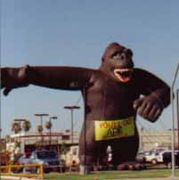 Rent giant Kong inflatables and gorilla advertising balloons here! 40ft. giant gorilla inflatable.